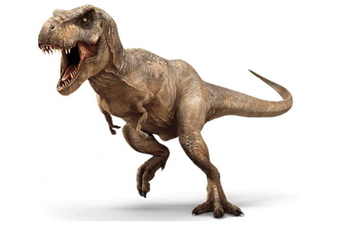 Акция на клей T-Rex стартовала!